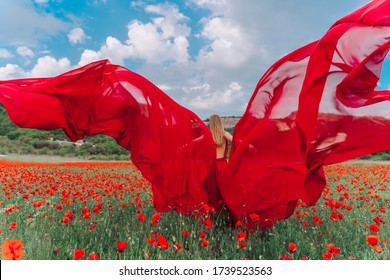 A young woman in a red dress and long red wings poses in a large field of red poppies at sunset.