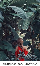 Young woman in red dress standing in tropical forest and looking at big banana leaves. Fine art and conceptual photo