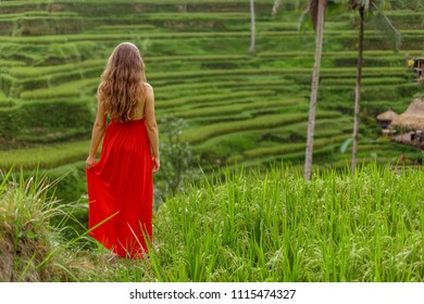 Young woman in red dress walking in rice fields Bali in Tegallalang. Rustic Ubud village landscape outside. Fashion style