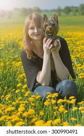 Young woman with red hair is sitting on a dandelion meadow. She is holding Yorkshire terrier puppy. Edited as soft light photo with the sun's rays that come from the upper left corner of the photo.