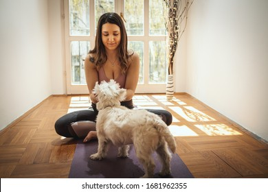 Young woman is relaxing with her sweetie dog pet during coronavirus pandemic doing yoga meditation in the living room at home. She is meditating on floor mat in morning sunshine