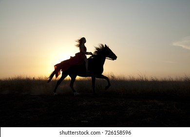 Young woman riding a horse in field at sunset. Stallion run gallop. Girl confidently in the saddle