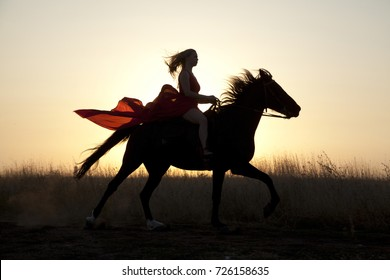 Young woman riding a horse galloping fast across the field. Silhouette girl and stallion at sunset
