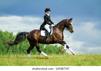 Young woman riding horse on the top of the hill. Equestrian sport - dressage.