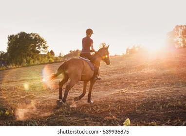 Young woman riding horse at sunset. equitation
