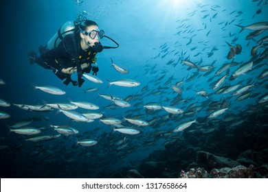 Young woman scuba diver exploring coral reef. Underwater sport and leasure activities.