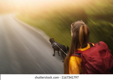 young woman and shepherd dog going for a walk outdoors in nature - running fast