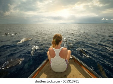 Young woman sit on boat looking to a flock dolphins swimming in near of the boat. North Sulawesi, Indonesia.