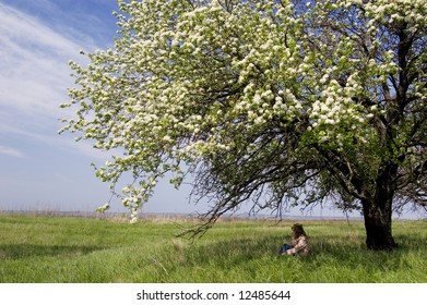 A young woman sitting in the shade of a flowering cherry tree