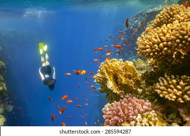 Young woman snorkeling close to reef in Blue Hole near Dahab, Egypt.  Blue Hole is well with depth of 100 m, a place often visited by divers.
