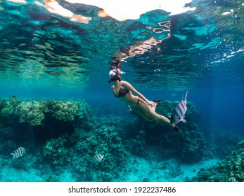 Young woman snorkeling at coral reef in tropical sea