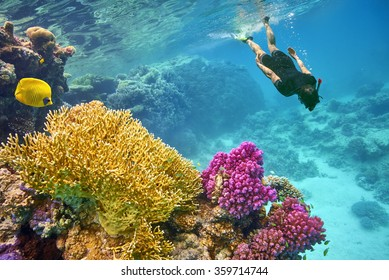 Young woman snorkeling, Marsa Alam, Red Sea, Egypt