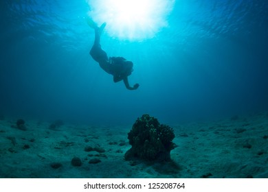 Young woman snorkeling through the blue pacific ocean6