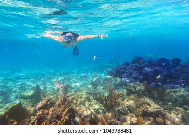 Young woman snorkeling in the tropical water of Mexico