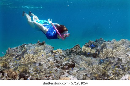 Young woman snorkeling underwater over a coral reef in a tropical resort on Vanua Levu Island, Fiji. Real people copy space