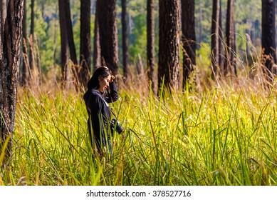 Young woman standing in green forest and looking at grass field.