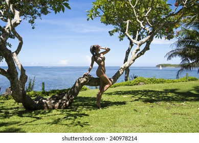 young woman standing near tree on the tropical island in a nice sunny day, Fiji