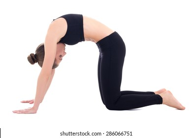 """young woman standing in yoga pose  """"cat"""" isolated on white background"""