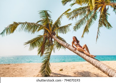 Young woman in swimwear  relaxing on the beach palm.  Tropical vacation and beach holidays concept. Color toned.
