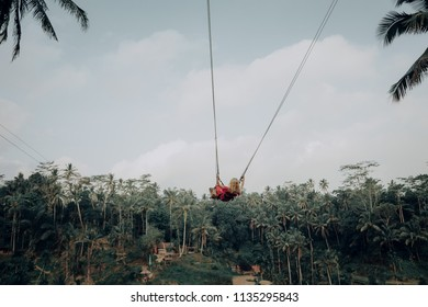 Young woman swinging in jungle rainforest of a tropical Bali island