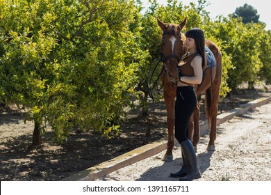 young woman takes care of her horse in equestrian