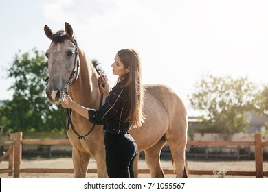 Young woman taking care of a horse. Broodmare managers are equine professionals with experience in managing the needs of mares and foals