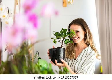 junge Frau, die sich um die Hauspflanzen kümmert, Gartenarbeit. Heimangebot für schöne junge Frau, die eine Bonsai in den Händen in der Nähe eines hellen Fensters hält