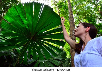 Young woman touches an Australian fan palm leaf in Daintree National Park in the tropical north of Queensland, Australia