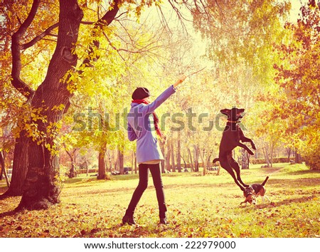 young woman training dog outdoor