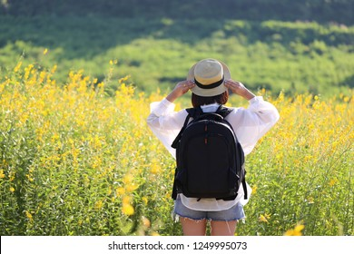 Young woman traveler with backpack enjoying and standing on Flowers yellow of the mountains background, Koh Larn in Pattaya city, Chonburi Thailand