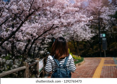 Young woman traveler backpacker traveling into sakura public park in Tokyo at Japan