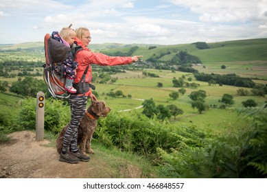 A young woman trekking with baby in a baby carrier  pointing at something in the landscape. Hiking activity with child and dog on family summer vacation, weekend nature tour