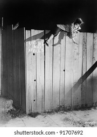 Young woman trying to climb over a wooden fence