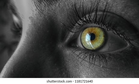 young woman vision eye with eyelashes close look