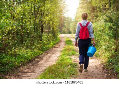 Young woman is walking along forest road with basket in her hand. Girl in forest goes to collect mushrooms and berries. Autumn harvest in the forest.