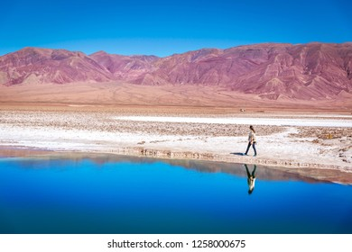 Young woman walking in the edge of a lagoon with water reflection and red mountains in the background at the Atacama Desert in the northern of Chile