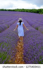 Young woman walking on beautiful Lavender fields, Provence, France