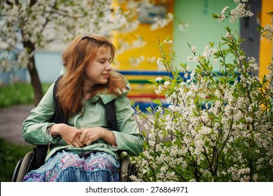 The young woman in a wheelchair inhales aroma of the blossoming cherry in the warm spring afternoon