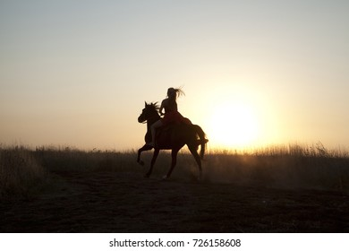 Young woman while riding horse at sunset. Silhouette girl rider in field