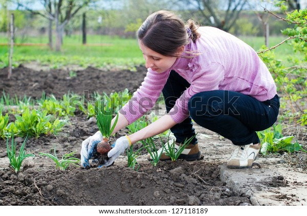 Young woman working in the garden. Horticulture.