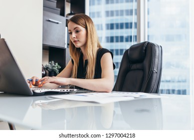 Young woman working on laptop studying financial data and statistics of the company