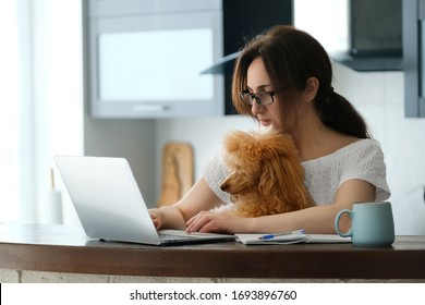 The young woman is working remotely. Young woman with her dog working using a laptop at home. Concept of the workplace at home, working remotely.