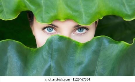 Young woman's face surrounded by tropical leaves. Woman eyes with Natural make-up on a tropical leaf background. Natural cosmetic and wellness concept. Purity and skincare. Space for text