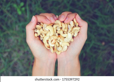 young womans hands holding heap of fresh roasted cashew nuts