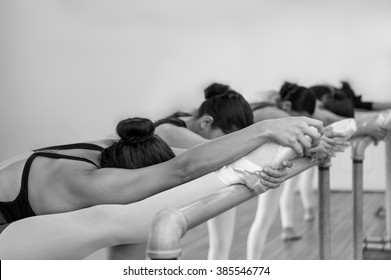 Young women in ballet training.