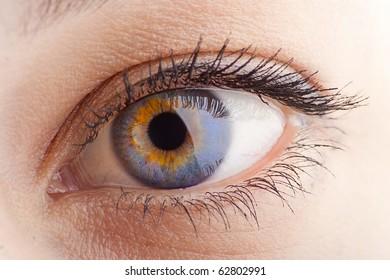 Young Women eye. Studio closeup shot (macro)