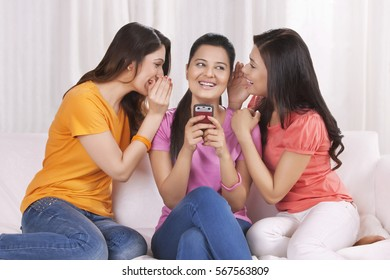 Young women spending leisure time together