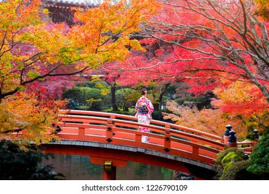 Young women wearing traditional Japanese Kimono at Daigo-ji temple with colorful maple trees in autumn, Daigoji temple is the famous temple in autumn, Kyoto, Japan.