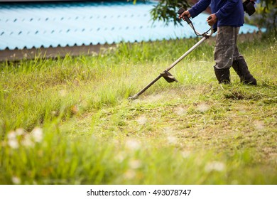 Young worker cut the grass with power mower