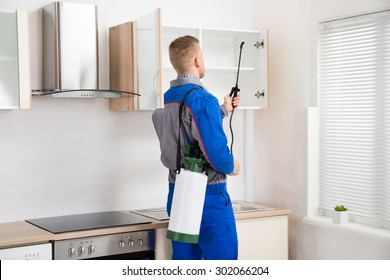 Young Worker Spraying Insecticide On Shelf Of Kitchen Room